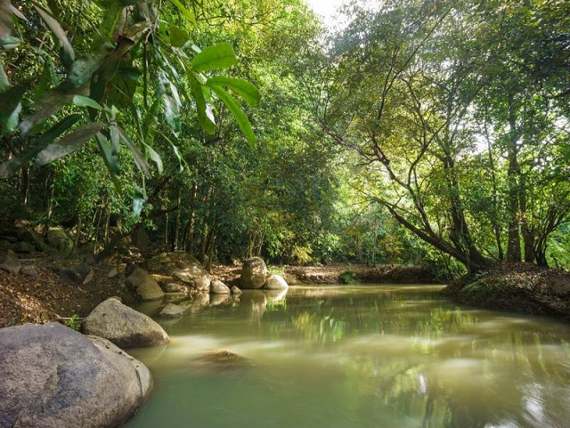 The wild natural beauty of the seven-acre rocky mountain in Dinh Quan