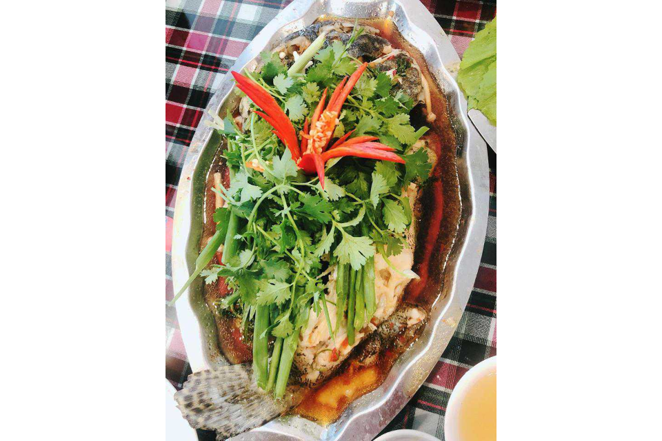 Steamed Grouper Fish