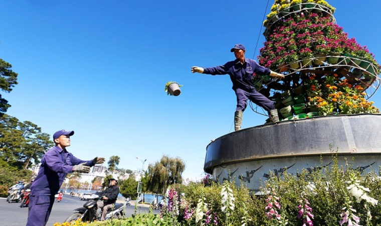 New look for the flower street in Dalat before the festival