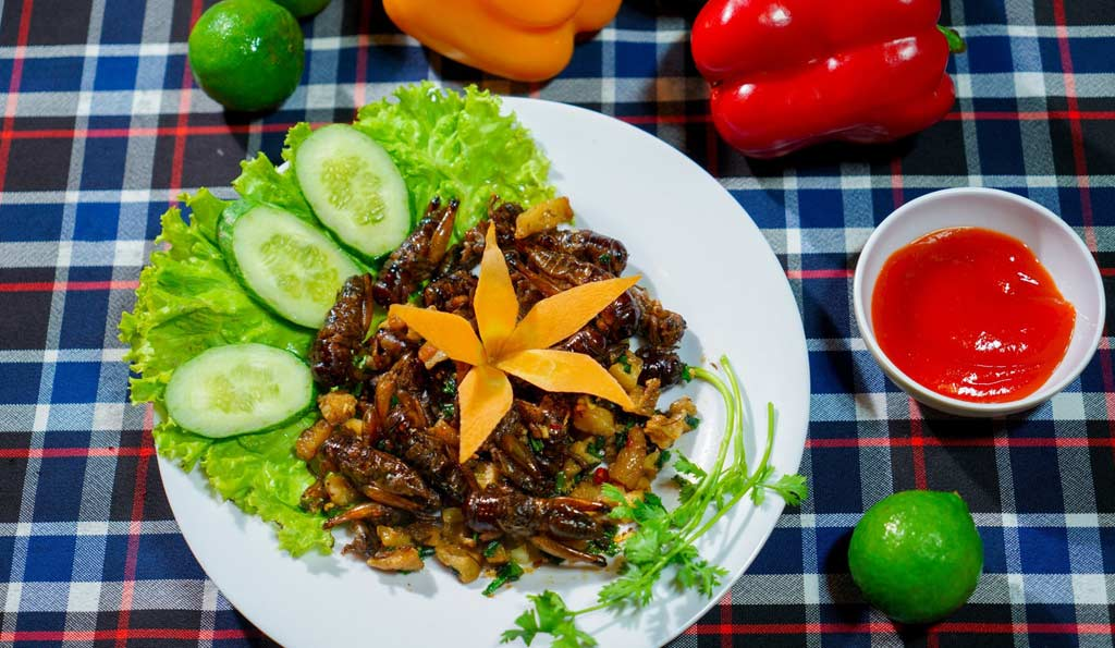 Fried crickets fish sauce