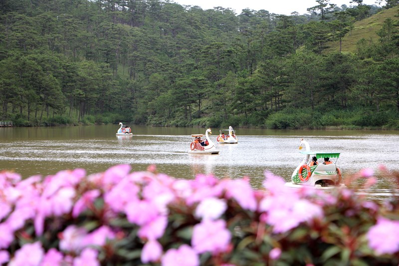 Places will interest you when travel Dalat at Tet holiday
